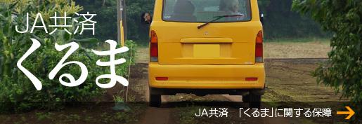 JA共済_くるま
